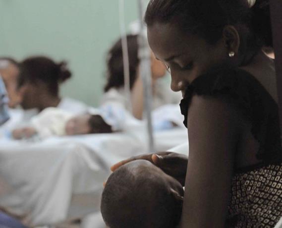 se-elevan-a-94-los-fallecidos-por-dengue-durante-el-2015