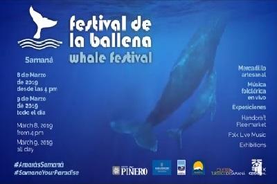 Festival-de-las-Ballenas-2